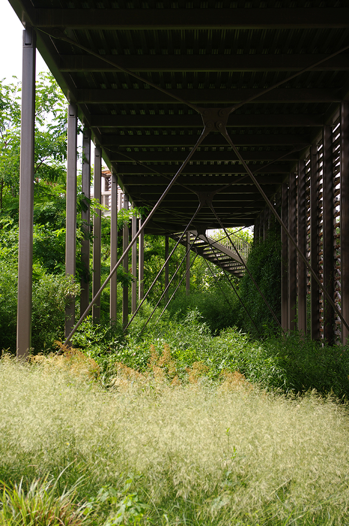 ANMA Rueil-Malmaison Passerelle et jardins